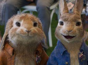 Peter Rabbit2 1